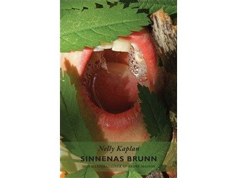 Sinnenas brunn 9789197866033