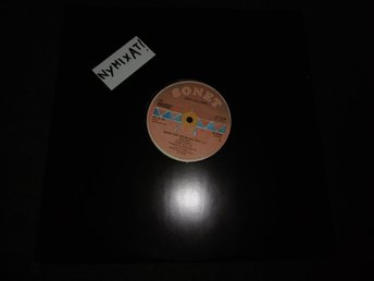 "Jerry Williams - Bang the drum all day - 12""- 1985"