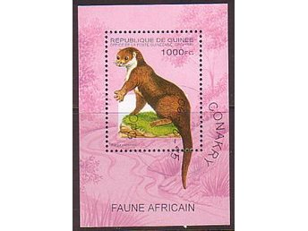 GUINEE - AFRICAN FAUNE