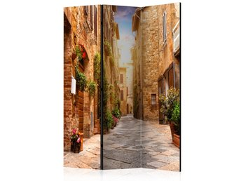 Rumsavdelare - Colourful Street in Tuscany Room Dividers 135