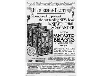 Fantastic Beasts The Crimes Of Grindelwald - Flourish And Blotts