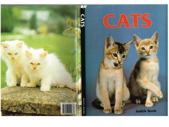 CATS - Judith Steeh (1983)