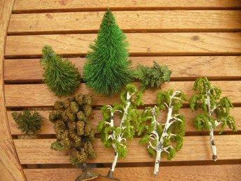 buskar och träd