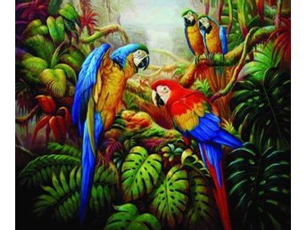 Colorful McGraw Parrots in Jungle Oil on Canvas Olja på Duk