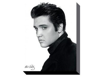 Elvis Canvastryck Portrait