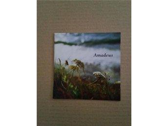 Amadeus 2 CD - Hörby - Amadeus 2 CD - Hörby