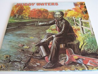 MUDDY WATERS - CHESS BLUES MASTERS SERIES - 2 LP