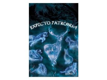 Harry Potter Poster Patronus A108