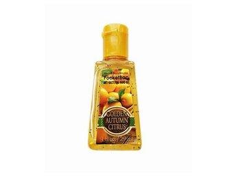 Bath & Body Works PocketBac Golden Autumn Citrus 29ml - Mölndal - Bath & Body Works PocketBac Golden Autumn Citrus 29ml - Mölndal