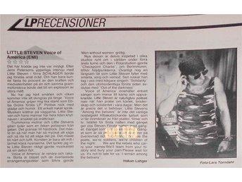LITTLE STEVEN - VOICE OF AMERICA (LP skivrecension) TIDNINGSARTIKEL 1984 - öckerö - LITTLE STEVEN - VOICE OF AMERICA (LP skivrecension) TIDNINGSARTIKEL 1984 - öckerö