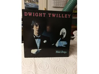 Dwight Twilley wild dogs