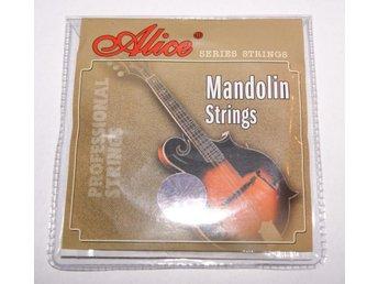 Mandolinsträngar, strängar till mandolin - Eskilstuna - Mandolinsträngar, strängar till mandolin - Eskilstuna