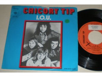 Chickory Tip 45/PS I.O.U. 1973 VG++
