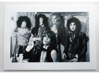 NEW YORK DOLLS - Band portrait, NYC 1973 - Hanekroot - *A4*-print NME!
