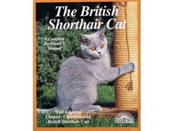 The british shorthair cat, Friedhelm Lessmeier (Eng)
