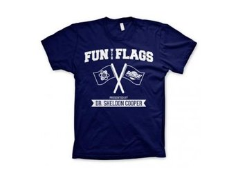Big Bang Theory T-shirt Fun With Flags S