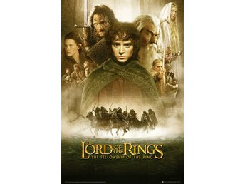 Lord Of The Rings - Fellowship Of The Ring One Sheet