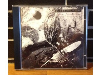 DAVID SYLVIAN - Secrets of the beehive (art pop - new wave - ambient UK 1987) CD - Malmö - DAVID SYLVIAN - Secrets of the beehive (art pop - new wave - ambient UK 1987) CD - Malmö