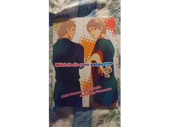 Axis powers Hetalia Prussia yaoi BL doujinshi Germany anime manga