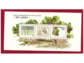 SRI LANKA. FORREST CONSERVATION AND TREE PLANTING