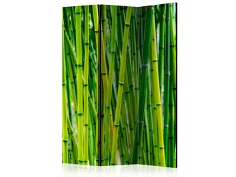 Rumsavdelare - Bamboo Forest Room Dividers 135x172
