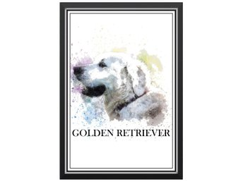 Affisch Poster Golden Retriever Hund Hundras Text Målning 33x48