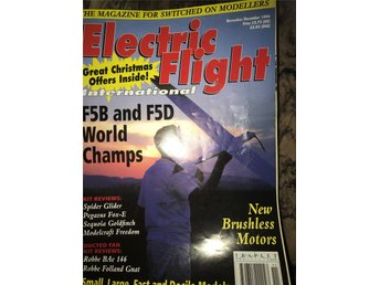 Electric Flight