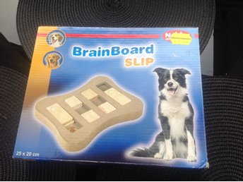 Brain Board Slip