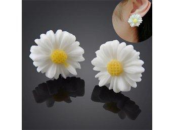Vintage Vit Daisy Blomma Stud Örhängen Ladies Cute Ear Studs - Wuhan - Vintage Vit Daisy Blomma Stud Örhängen Ladies Cute Ear Studs - Wuhan
