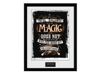 Harry Potter Bild Wand Out 40 x 30