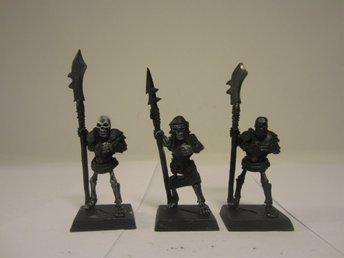 Warhammer Fantasy 3 st Vampire Counts Classic Armoured Skeleton