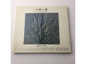 Fotobok, A Tree, A Blace of Grass, Shinozo Maeda
