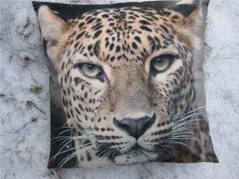 KUDDE LEOPARD Afrika gepard TREND vildkatt kattdjur - Bollnäs - KUDDE LEOPARD Afrika gepard TREND vildkatt kattdjur - Bollnäs