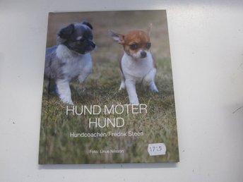 Hund möter hund - Fredrik Steen - Västervik - Hund möter hund - Fredrik Steen - Västervik