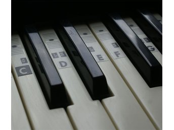 Piano Keyboard Music Note Stickers (for all types) Transparent C-D-E-F-G-A-B.