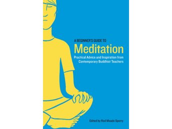Beginners guide to meditation, a 9781611800579