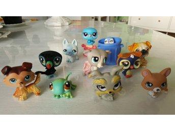 Rask 11 st Littlest pet shop figurer, Hasbro Lps (355784740) ᐈ Köp på JB-85