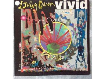 LIVING COLOUR - VIVID - mycket svårhittad vinyl i nyskick - rare - Lidköping - LIVING COLOUR - VIVID - mycket svårhittad vinyl i nyskick - rare - Lidköping