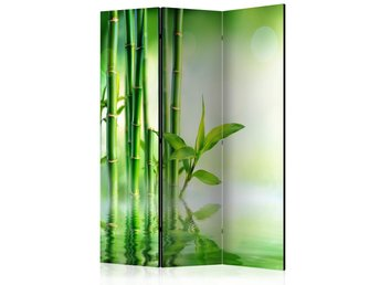 Rumsavdelare - Green Bamboo Room Dividers 135x172