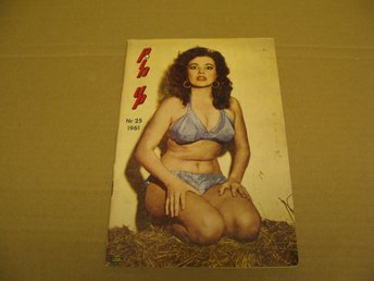 ** Pin Up Nr 25 1961 ** 1950's/60's GLAMOUR **