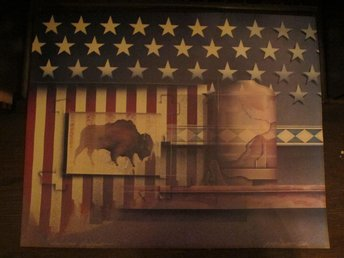 "Konstplansch James Carter ""American Buffalo"" 70 x 55 cm"