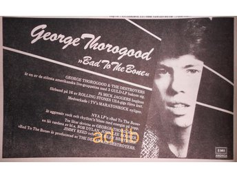 GEORGE THOROGOOD - BAD TO THE BONE, TIDNINGSANNONS+RECENSION 1982