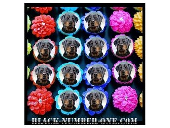 Rottweiler tårtoblater - Cupcake / Muffin toppers