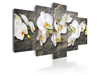 Tavla - Orchids on the stone 100x50