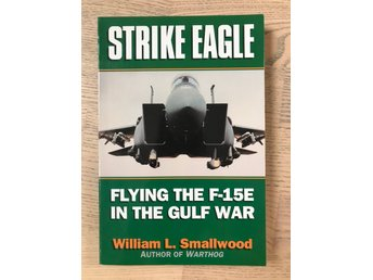 Strike Eagle: Flying the F15-E in the Gulf War