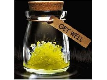 "NY!Magical Gift DIY Lucky Growing Grow Crystal""Get Well""Gul"