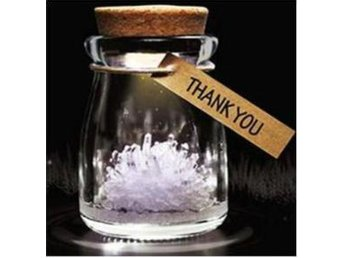 "NY!Make a Wish DIY Magical Growing Crystal  ""Thank You"" Vit"