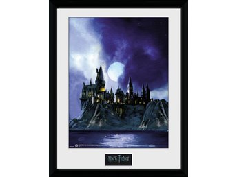 Tavla - Harry Potter - Hogwarts Painted