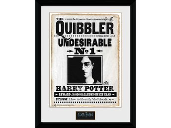 Tavla - Harry Potter - Quibler