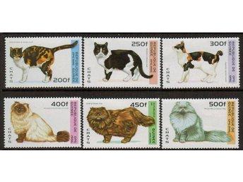 Guinea (Rep) Katter 6v.kpl/** 1996 - Nybro - Guinea (Rep) Katter 6v.kpl/** 1996 - Nybro